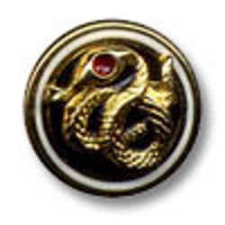 P1-S2-Candidate-Pin