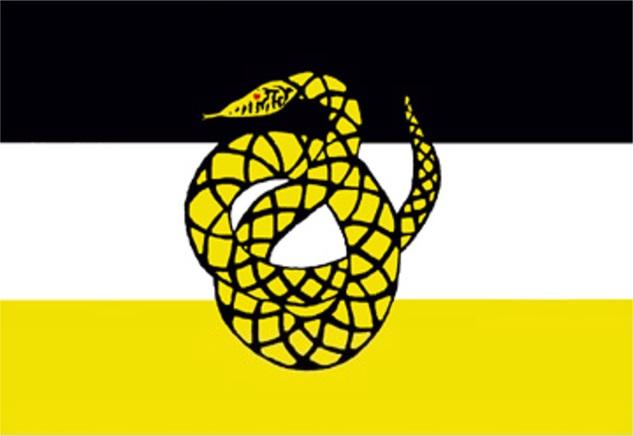 P1-S2-Flag